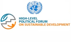 Sustainable Development Governance